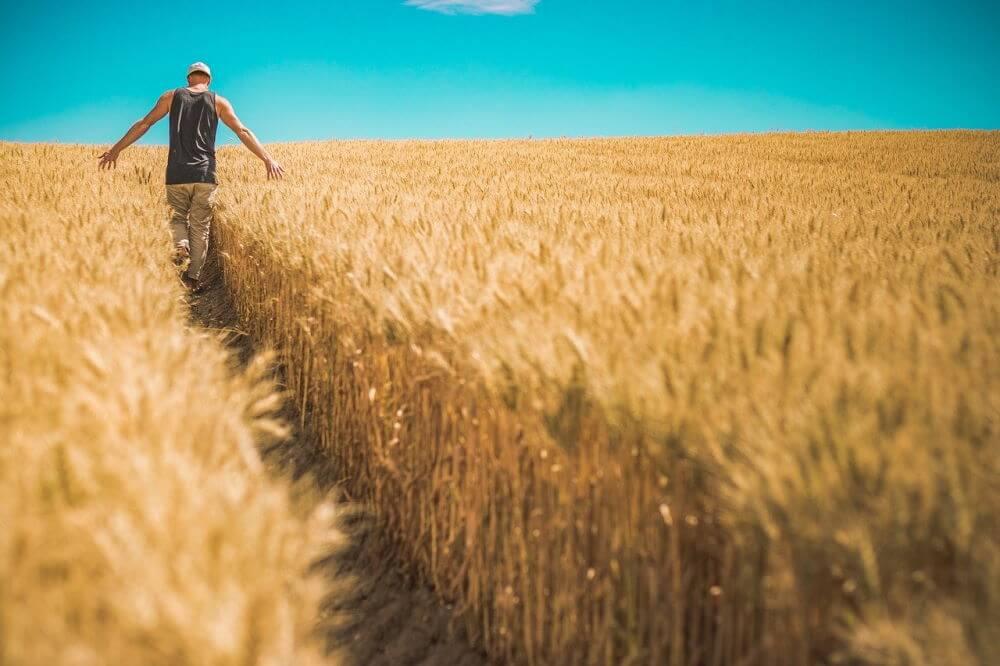 Kredyt hipoteczny dla rolnika